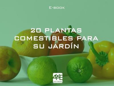 20 plantas comestibles para su jardín